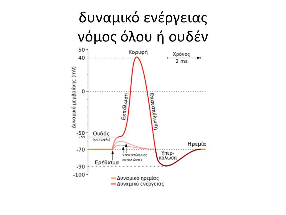 δυναμικό ενέργειας νόμος όλου ή ουδέν