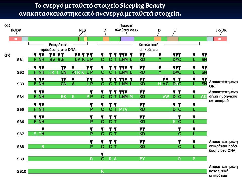 Consensus 12 μεταθετών από 8 είδη: μη λειτουργικό
