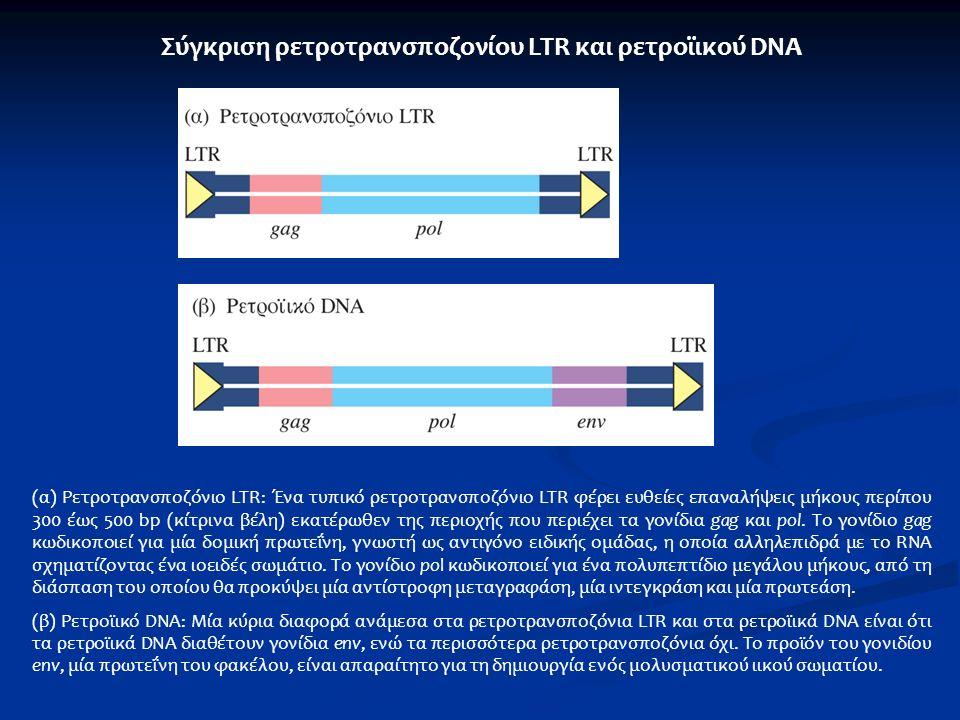 Σύγκριση ρετροτρανσποζονίου LTR και ρετροϊικού DNA