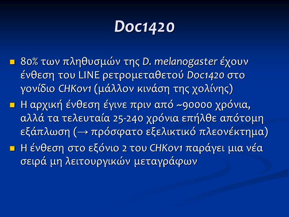 Doc1420 80% των πληθυσμών της D. melanogaster έχουν ένθεση του LINE ρετρομεταθετού Doc1420 στο γονίδιο CHKov1 (μάλλον κινάση της χολίνης)