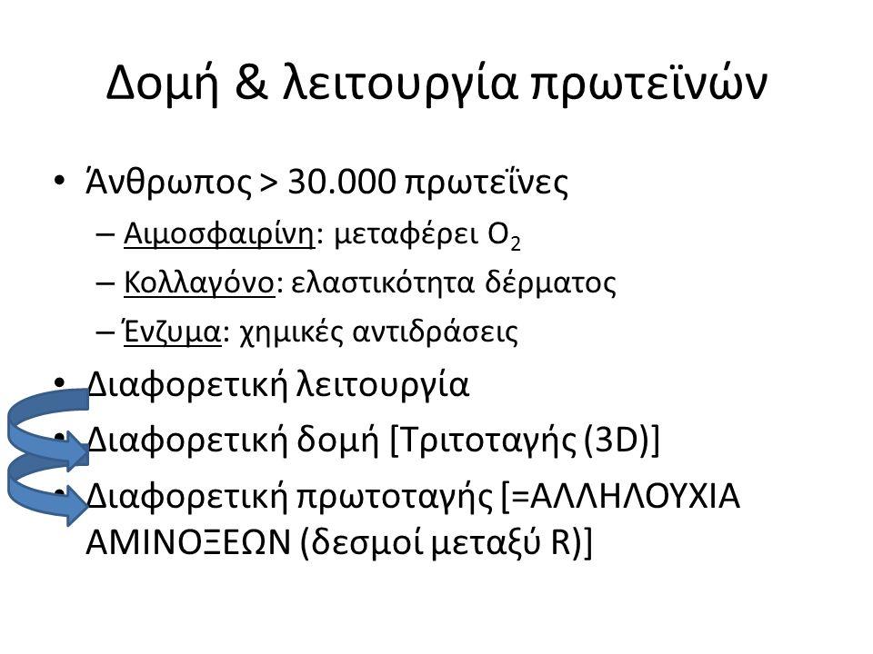 Δομή & λειτουργία πρωτεϊνών