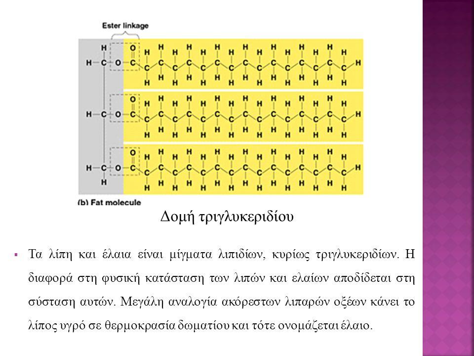 Δομή τριγλυκεριδίου