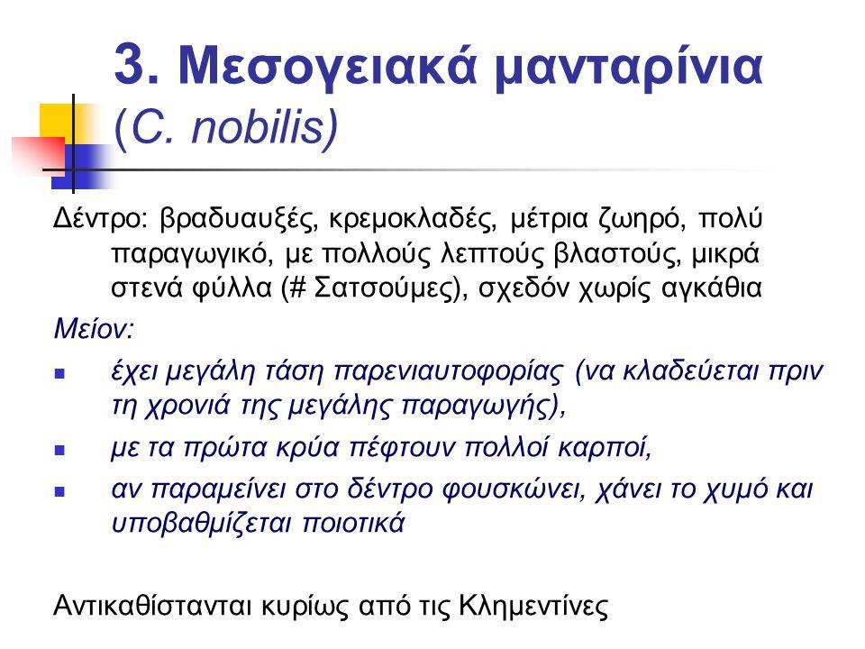3. Μεσογειακά μανταρίνια (C. nobilis)