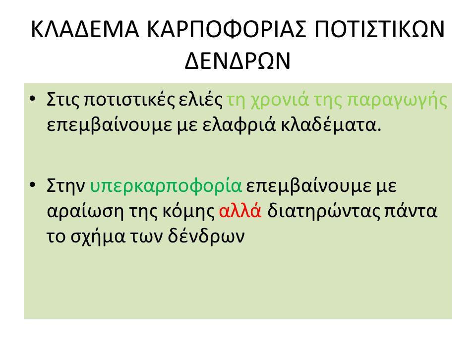 ΚΛΑΔΕΜΑ ΚΑΡΠΟΦΟΡΙΑΣ ΠΟΤΙΣΤΙΚΩΝ ΔΕΝΔΡΩΝ
