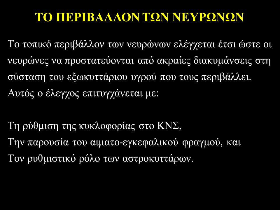 ΤΟ ΠΕΡΙΒΑΛΛΟΝ ΤΩΝ ΝΕΥΡΩΝΩΝ