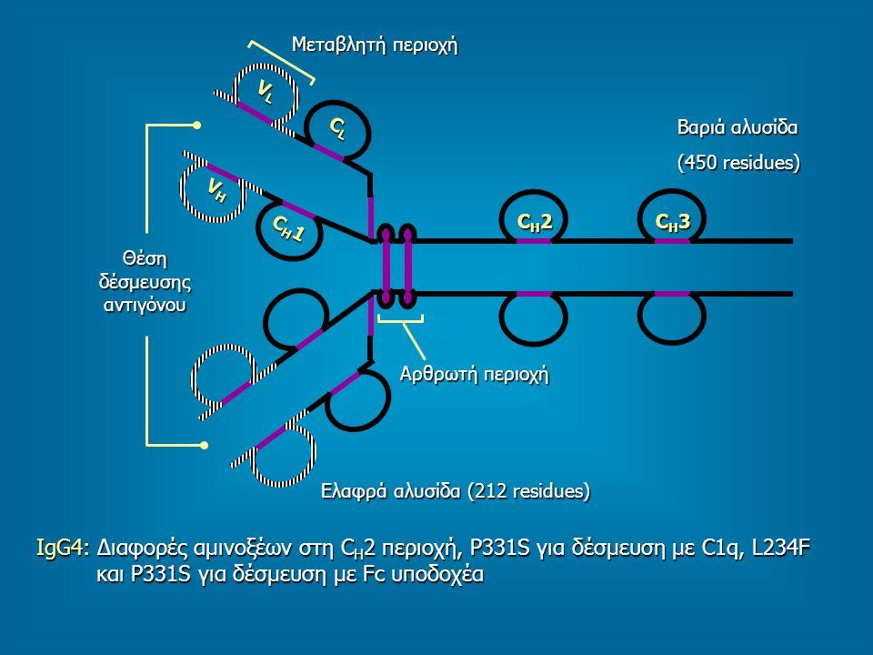 Θέση δέσμευσης αντιγόνου
