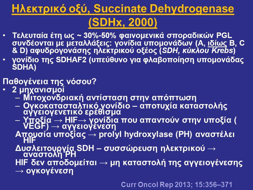 Ηλεκτρικό οξύ, Succinate Dehydrogenase (SDHx, 2000)