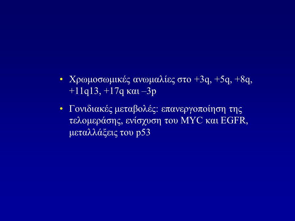 Χρωμοσωμικές ανωμαλίες στο +3q, +5q, +8q, +11q13, +17q και –3p