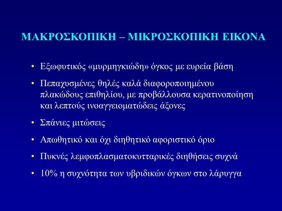 ΜΑΚΡΟΣΚΟΠΙΚΗ – ΜΙΚΡΟΣΚΟΠΙΚΗ ΕΙΚΟΝΑ