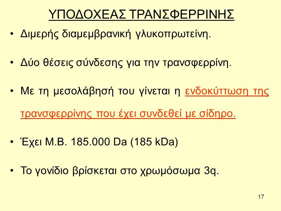 ΥΠΟΔΟΧΕΑΣ ΤΡΑΝΣΦΕΡΡΙΝΗΣ