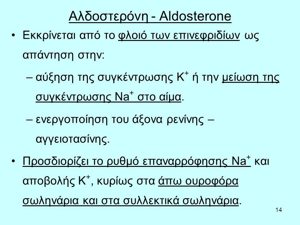 Αλδοστερόνη - Aldosterone