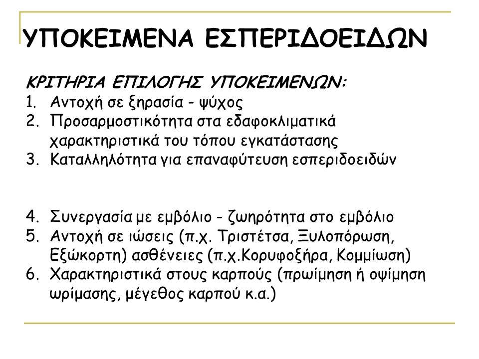 ΥΠΟΚΕΙΜΕΝΑ ΕΣΠΕΡΙΔΟΕΙΔΩΝ