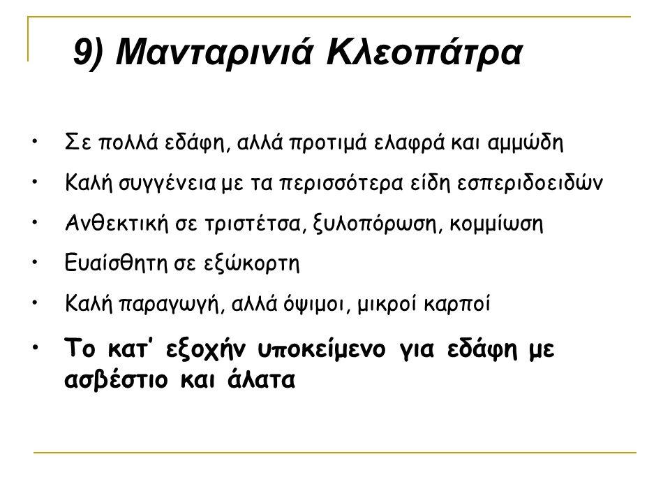 9) Μανταρινιά Κλεοπάτρα