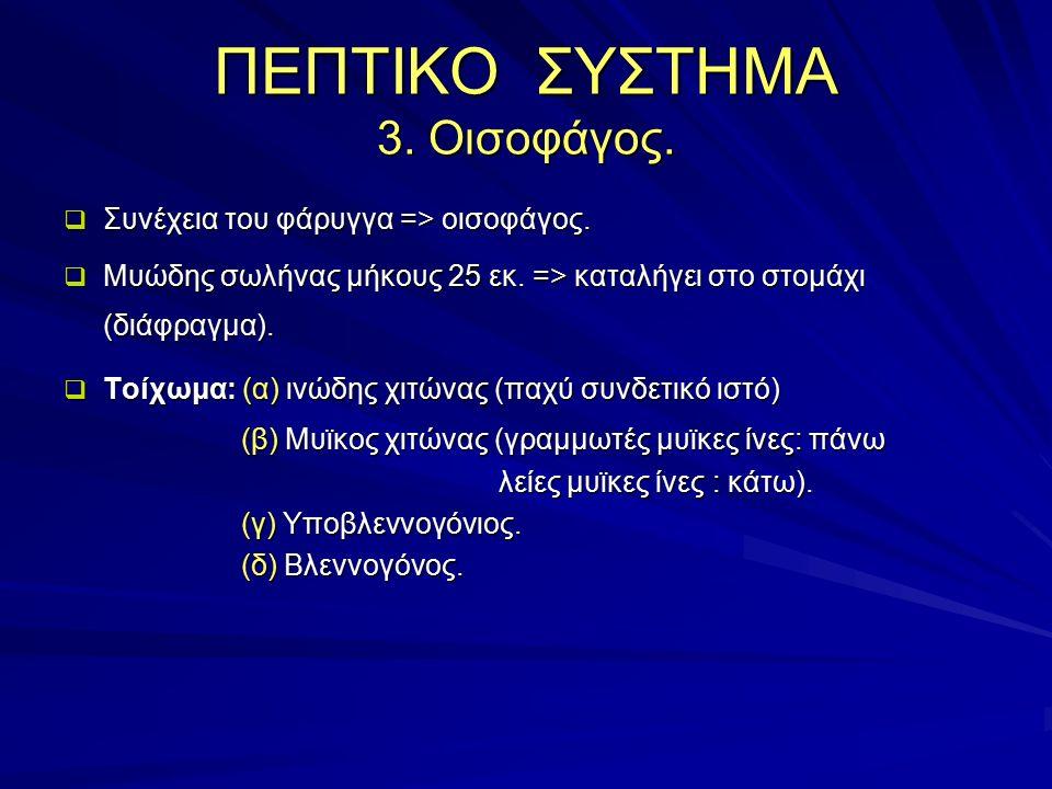ΠΕΠΤΙΚΟ ΣΥΣΤΗΜΑ 3. Οισοφάγος.