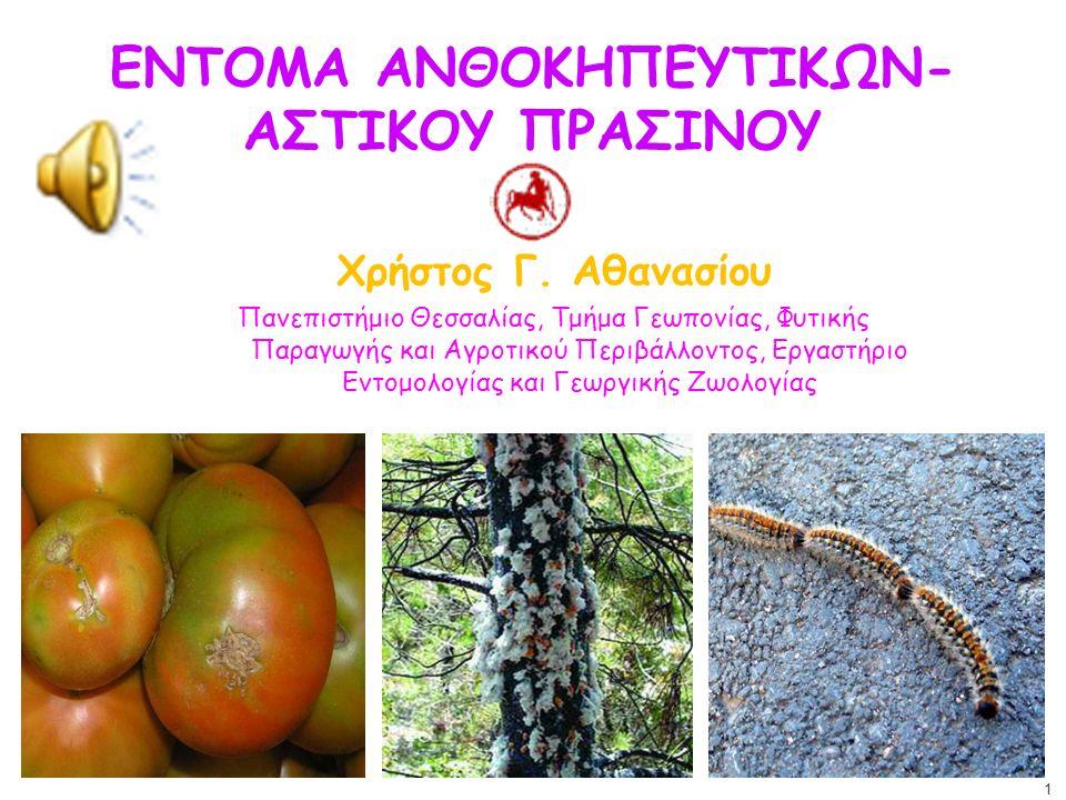 ΕΝΤΟΜΑ ΑΝΘΟΚΗΠΕΥΤΙΚΩΝ-ΑΣΤΙΚΟΥ ΠΡΑΣΙΝΟΥ