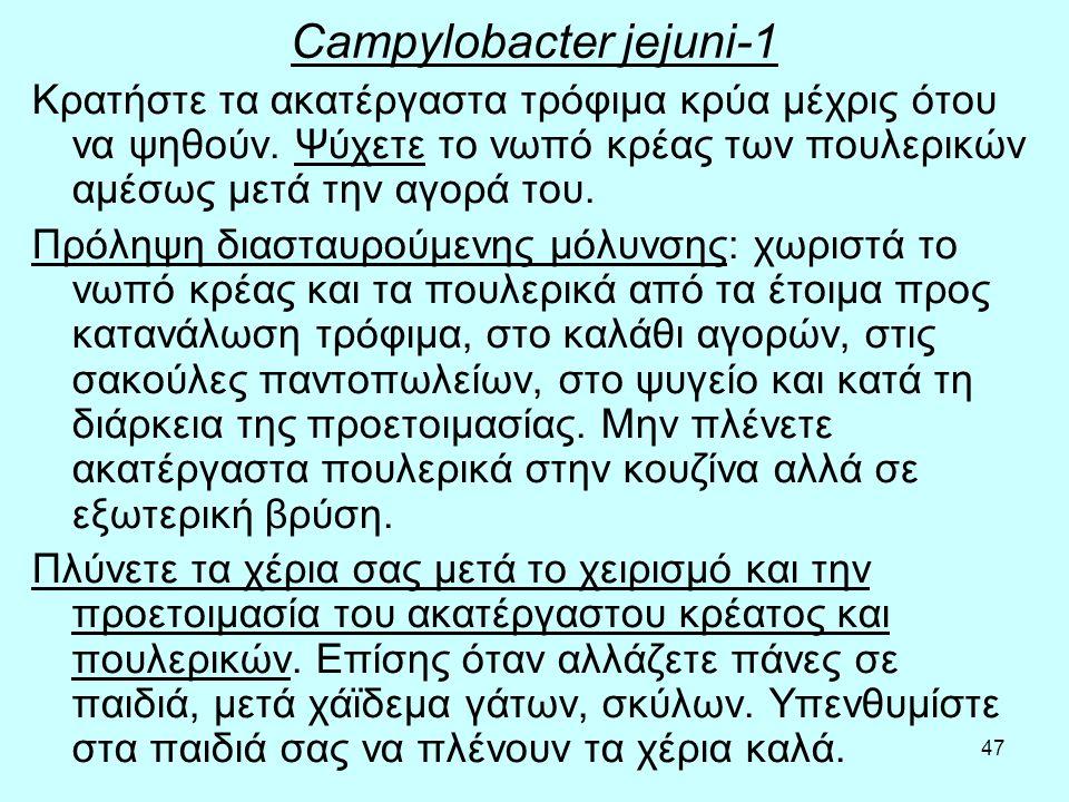 Campylobacter jejuni-1