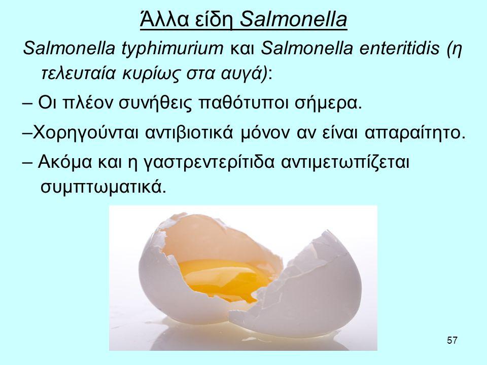 Άλλα είδη Salmonella Salmonella typhimurium και Salmonella enteritidis (η τελευταία κυρίως στα αυγά):