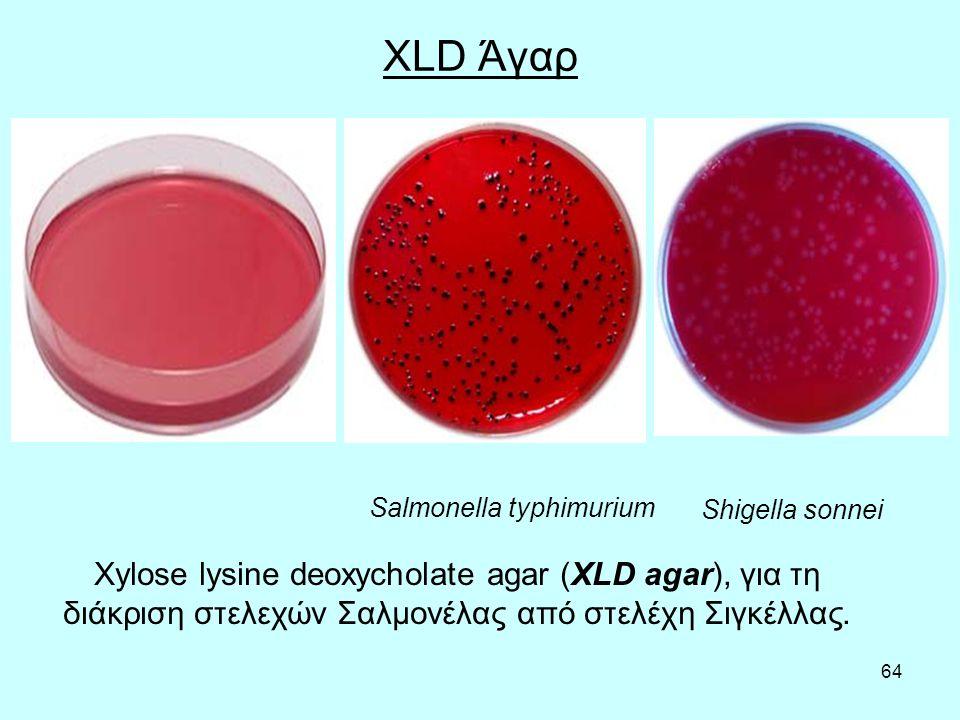 XLD Άγαρ Salmonella typhimurium. Shigella sonnei.