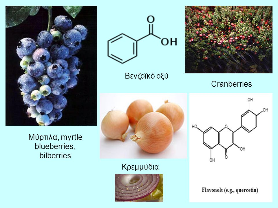 Μύρτιλα, myrtle blueberries,
