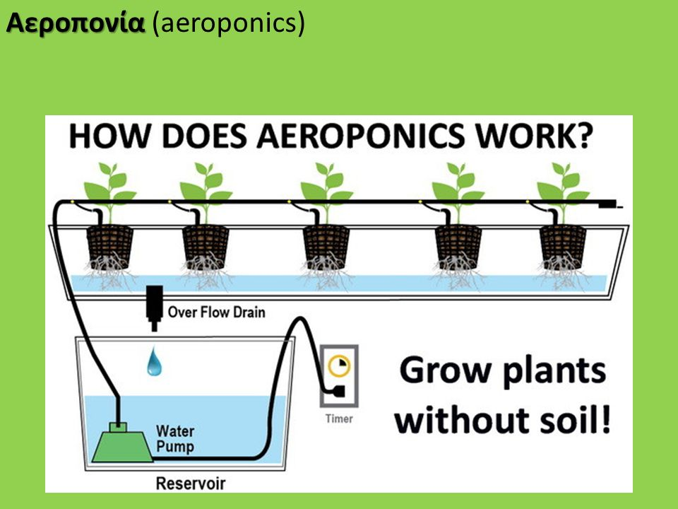 Αεροπονία (aeroponics)