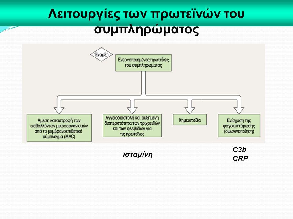 Λειτουργίες των πρωτεϊνών του συμπληρώματος