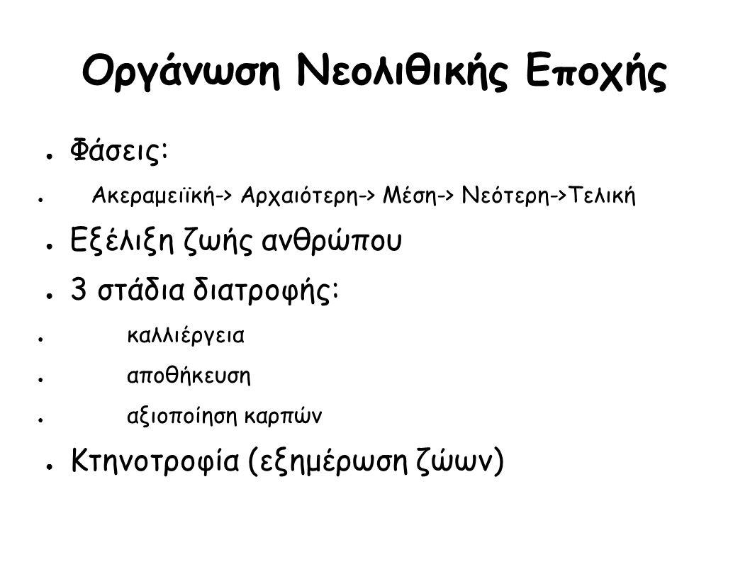 Οργάνωση Νεολιθικής Εποχής