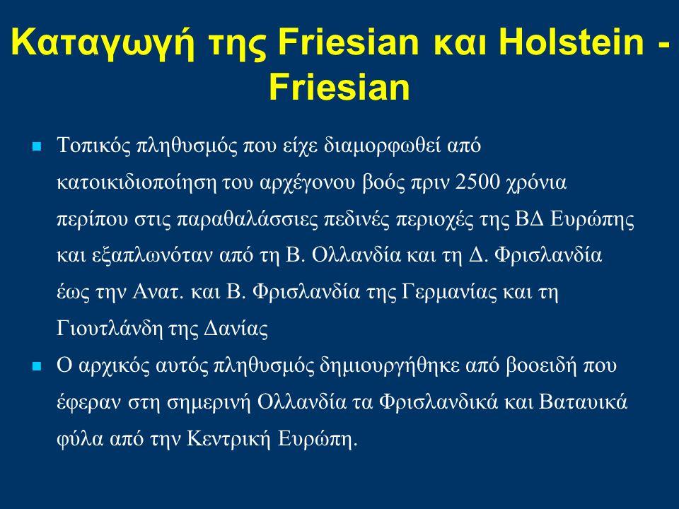 Καταγωγή της Friesian και Ηolstein - Friesian