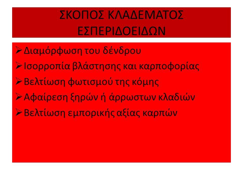 ΣΚΟΠΟΣ ΚΛΑΔΕΜΑΤΟΣ ΕΣΠΕΡΙΔΟΕΙΔΩΝ