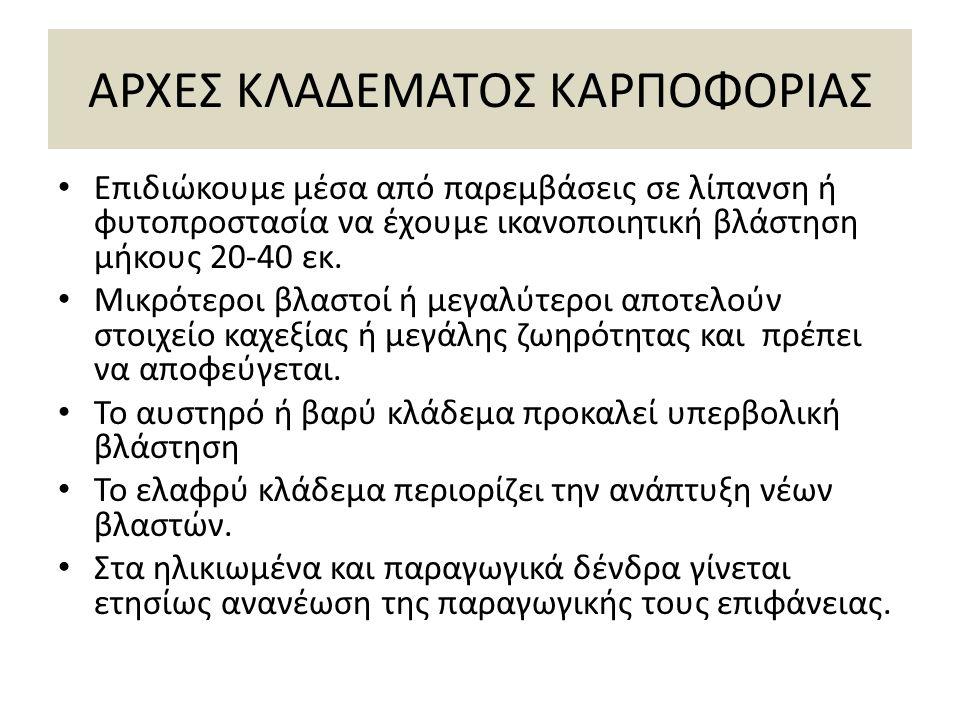 ΑΡΧΕΣ ΚΛΑΔΕΜΑΤΟΣ ΚΑΡΠΟΦΟΡΙΑΣ