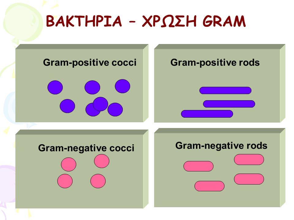 ΒΑΚΤΗΡΙΑ – ΧΡΩΣΗ GRAM Gram-positive cocci Gram-positive rods