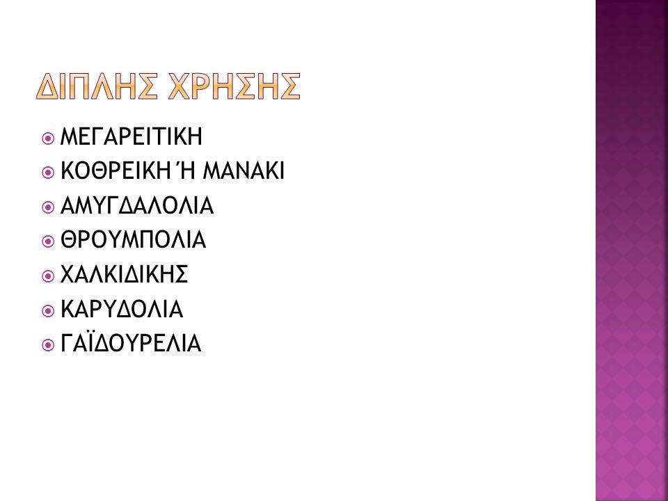ΔΙΠΛΗΣ ΧΡΗΣΗΣ ΜΕΓΑΡΕΙΤΙΚΗ ΚΟΘΡΕΙΚΗ Ή ΜΑΝΑΚΙ ΑΜΥΓΔΑΛΟΛΙΑ ΘΡΟΥΜΠΟΛΙΑ