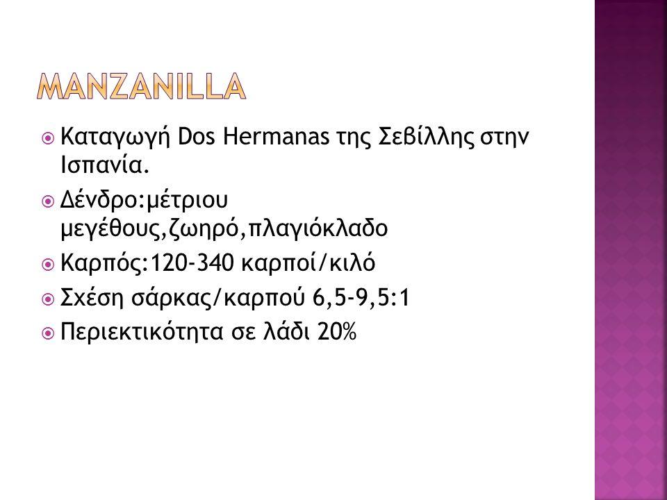 μαnzanilla Καταγωγή Dos Hermanas της Σεβίλλης στην Ισπανία.