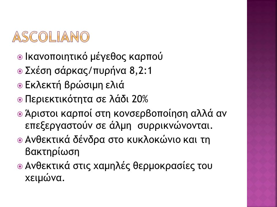 ASCOLIANO Ικανοποιητικό μέγεθος καρπού Σχέση σάρκας/πυρήνα 8,2:1