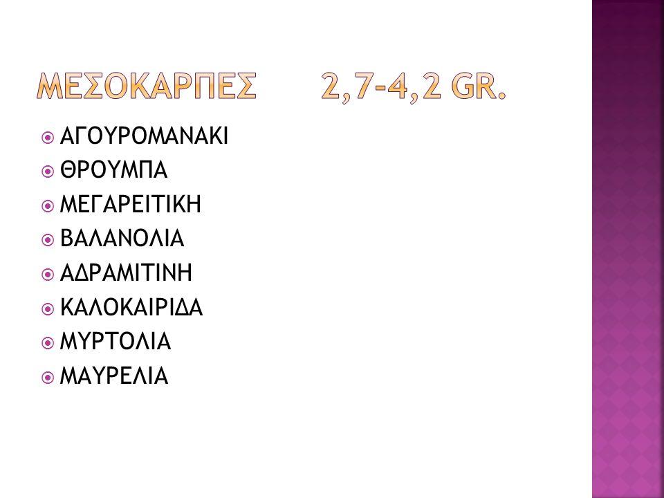 ΜΕΣΟΚΑΡΠΕΣ 2,7-4,2 GR. ΑΓΟΥΡΟΜΑΝΑΚΙ ΘΡΟΥΜΠΑ ΜΕΓΑΡΕΙΤΙΚΗ ΒΑΛΑΝΟΛΙΑ