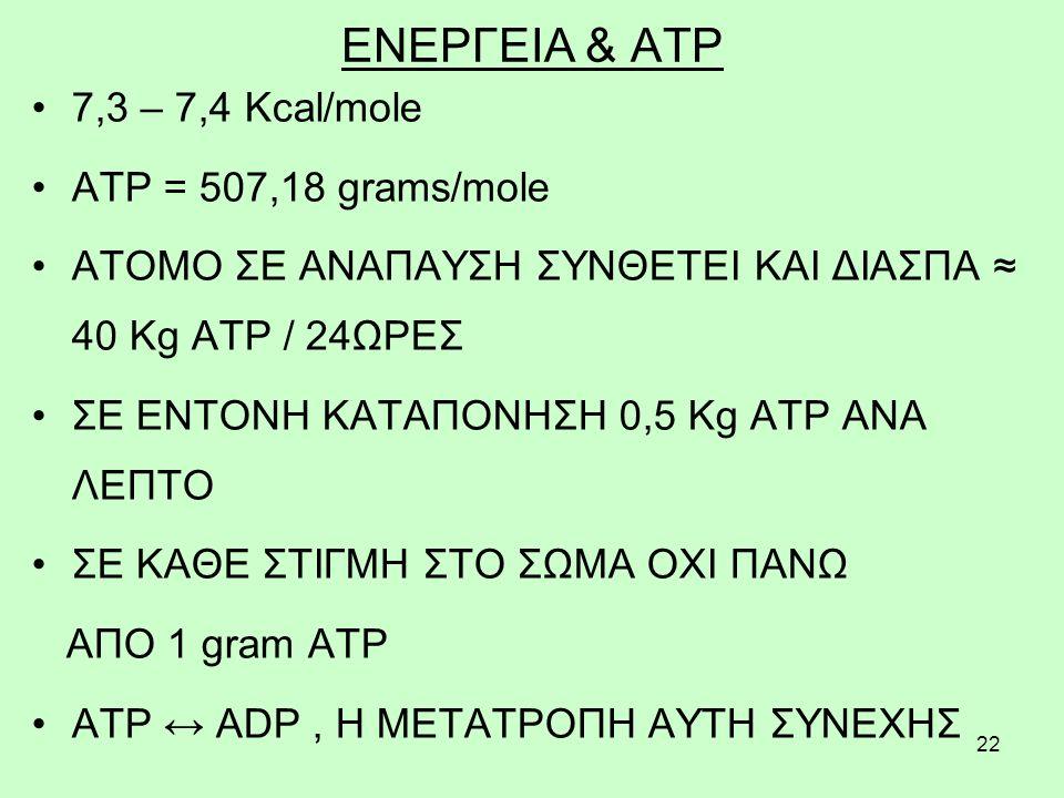 ΕΝΕΡΓΕΙΑ & ATP 7,3 – 7,4 Kcal/mole ATP = 507,18 grams/mole
