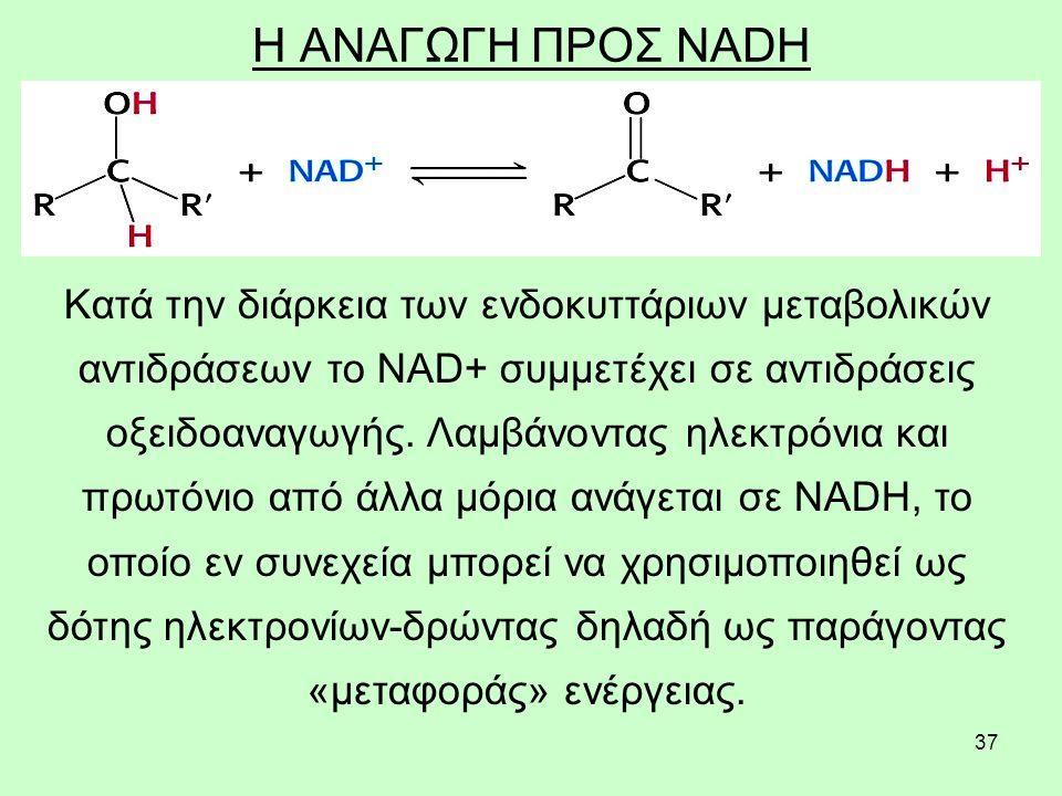 Η ΑΝΑΓΩΓΗ ΠΡΟΣ NADH