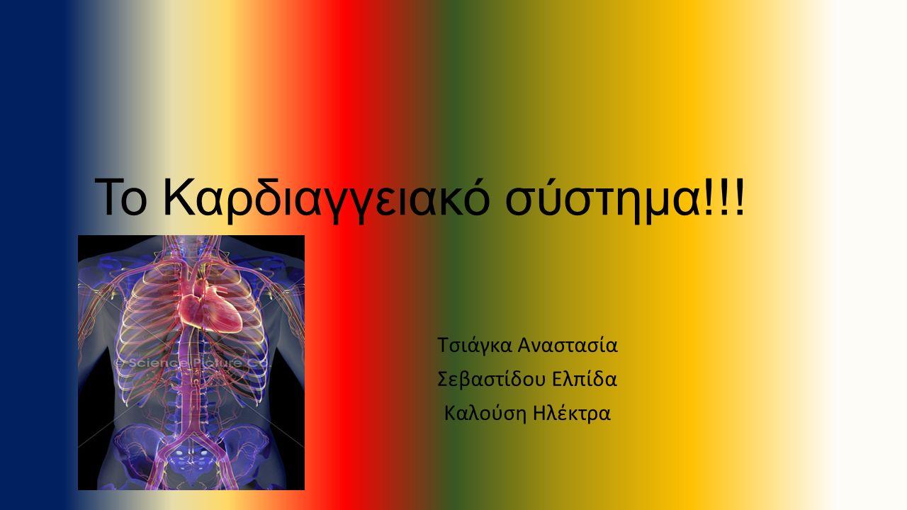 Το Καρδιαγγειακό σύστημα!!!