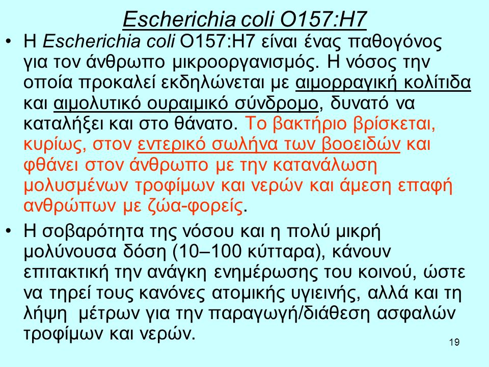 Escherichia coli O157:H7