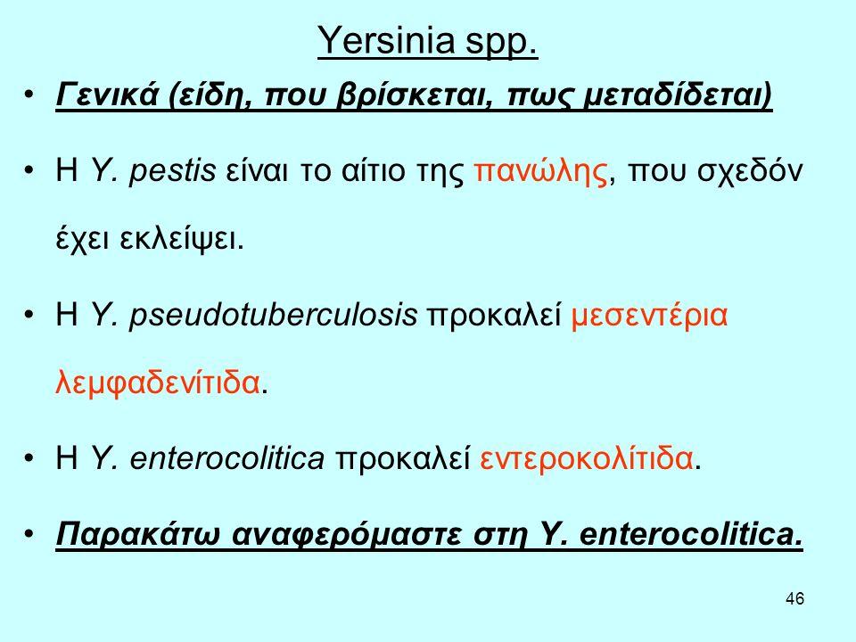 Yersinia spp. Γενικά (είδη, που βρίσκεται, πως μεταδίδεται)