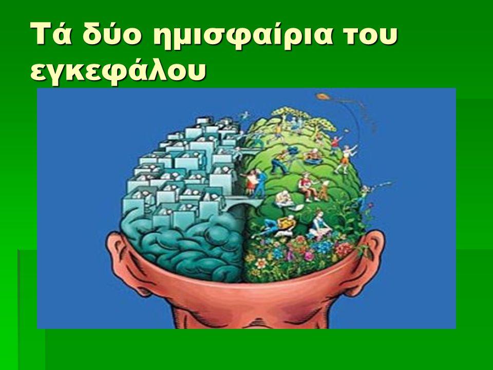 Τά δύο ημισφαίρια του εγκεφάλου