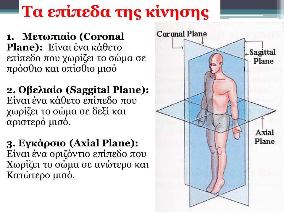 Τα επίπεδα της κίνησης Μετωπιαίο (Coronal Plane): Είναι ένα κάθετο