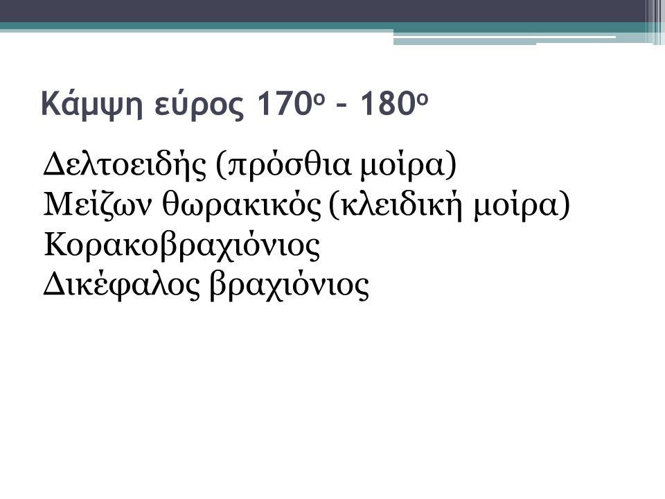 Κάμψη εύρος 170ο – 180ο Δελτοειδής (πρόσθια μοίρα) Μείζων θωρακικός (κλειδική μοίρα) Κορακοβραχιόνιος.