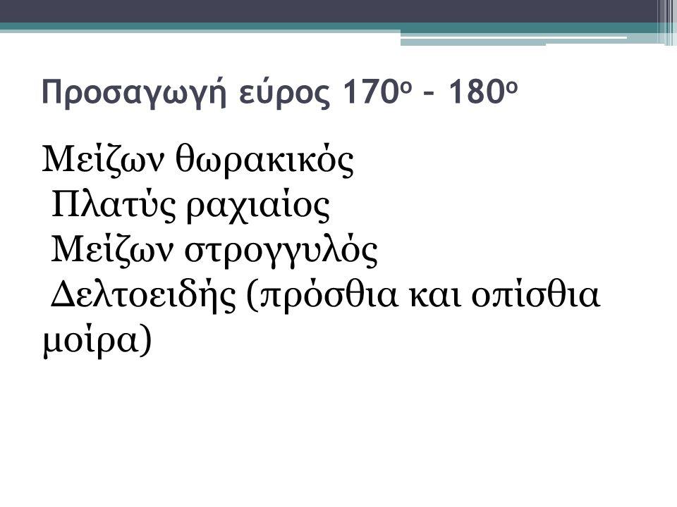 Δελτοειδής (πρόσθια και οπίσθια μοίρα)