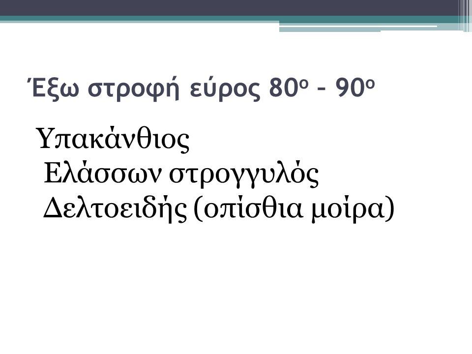 Δελτοειδής (οπίσθια μοίρα)