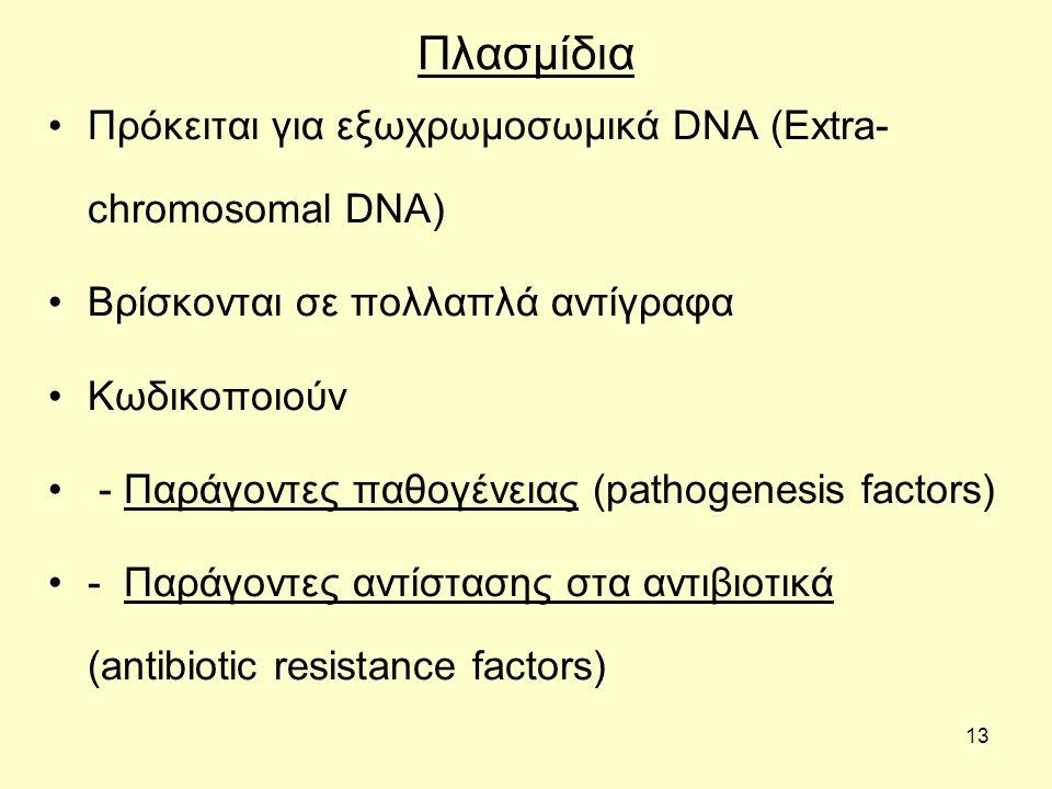 Πλασμίδια Πρόκειται για εξωχρωμοσωμικά DNA (Extra-chromosomal DNA)