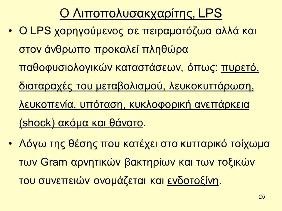 Ο Λιποπολυσακχαρίτης, LPS