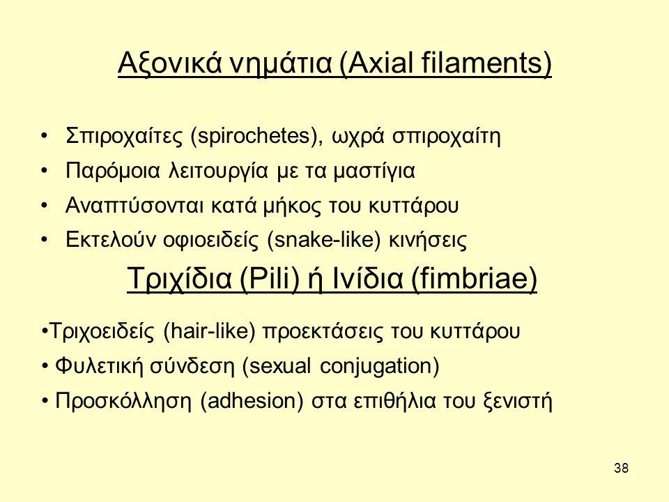 Αξονικά νημάτια (Axial filaments)