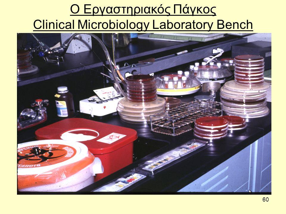 Ο Εργαστηριακός Πάγκος Clinical Microbiology Laboratory Bench