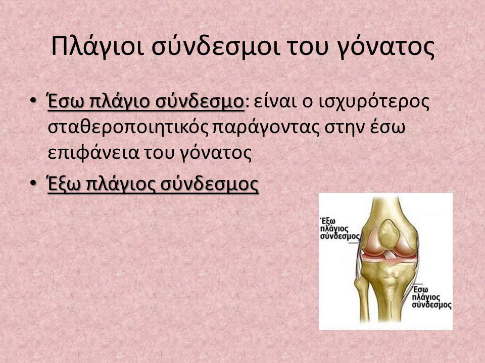 Πλάγιοι σύνδεσμοι του γόνατος