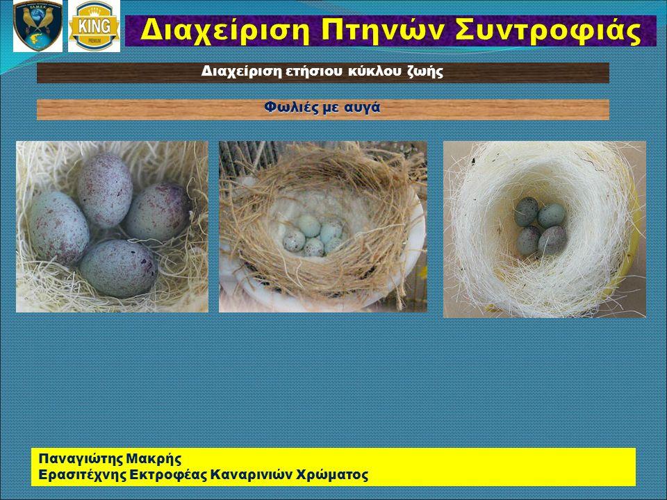 Διαχείριση Πτηνών Συντροφιάς